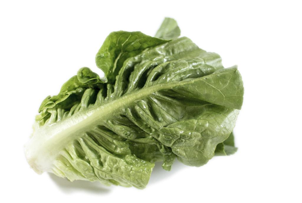 Økologisk hjertesalat