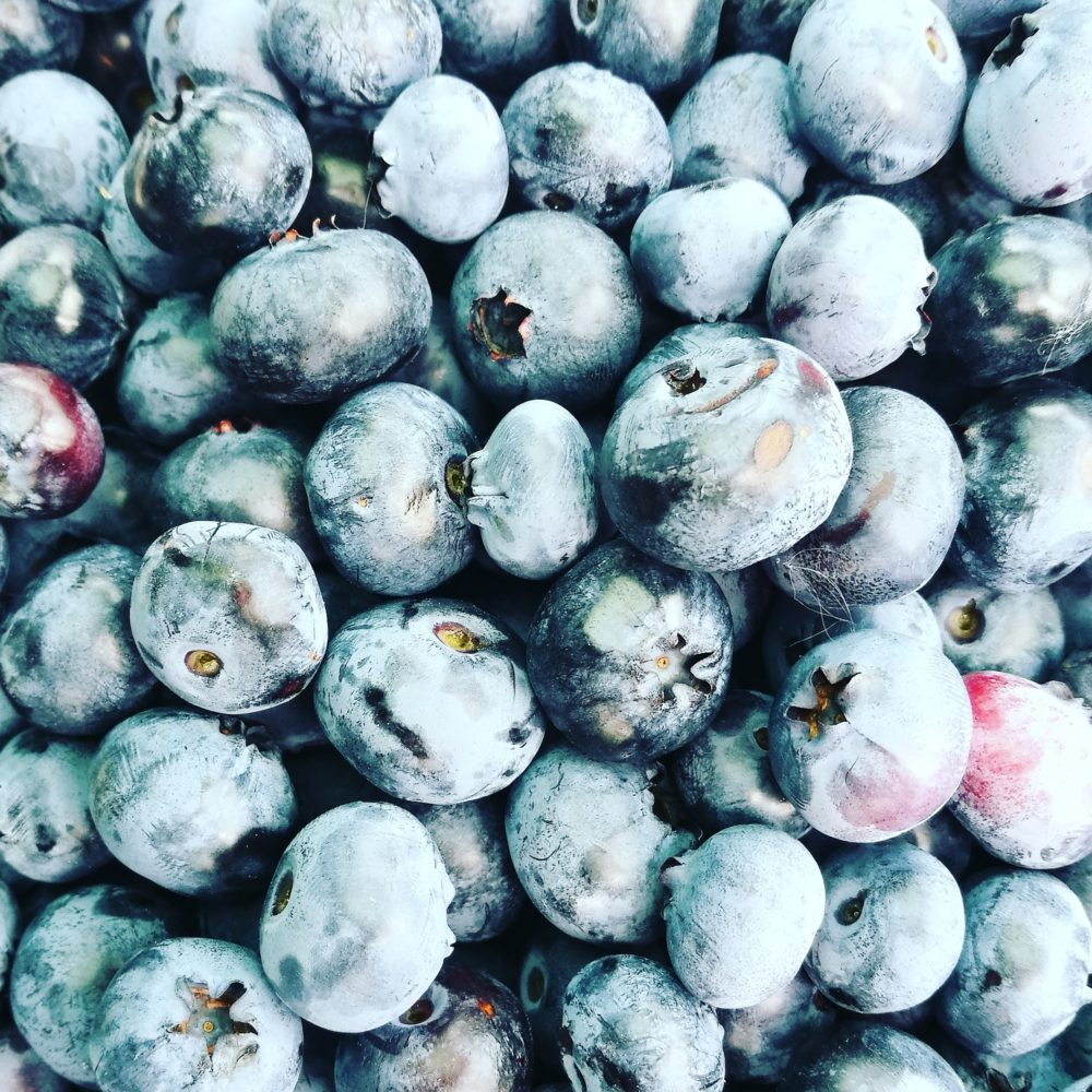 BLUEBERRIES – the sweet and healthy berrybombs :)