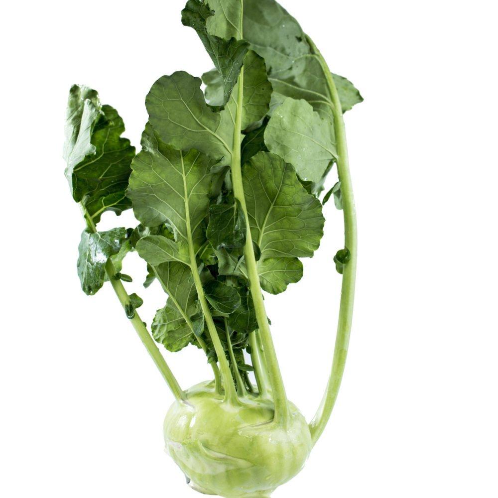 Kohlrabi, green
